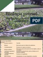 Bio 1 (7) Vitaminas Minerales