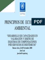 Principios de Economía Ambiental.pdf