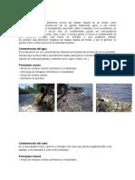 Contaminación y Tipos de Contaminacion