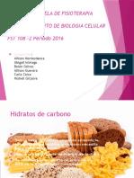 carbohidrtos