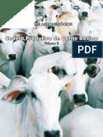 Cadeia Produtiva da Carne Bovina.pdf