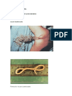 88193279-APOSTILA-PARASITOLOGIA.pdf