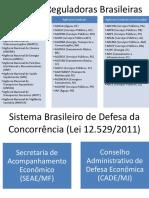 Regulação e Defesa Da Concorrência No Brasil