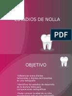 clase5ESTADIOS DE NOLLA.pptx