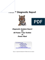 Example Diagnostic Report - us.pdf