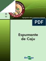 ESPUMANTE DE CAJU