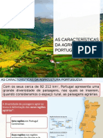 Agricultura Port. Carat. I 16-17 - Areal