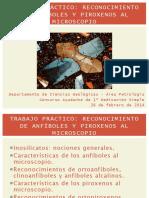 RECONOCIMIENTO_DE_ANFIBOLES_Y_PIROXENOS.pdf