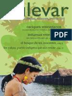 luchaIndigena.pdf
