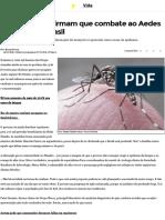 Especialistas Afirmam Que Combate Ao Aedes Demorou No Brasil
