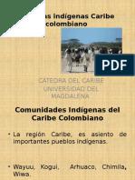 Culturas Indígenas Caribe Colombiano
