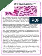 Úlceras Corneanas Por Amebas de Vida Libre en La Fundación Oftalmológica de Santander