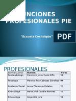 Funciones Profesionales PIE