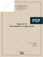 Tema 4 Tratamiento Curricular