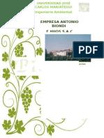 Informe de Evaluación de Riesgos Ambientales (2)