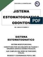 2. Clase S. Estomatognatico