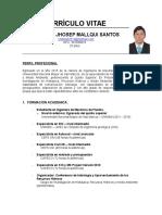 Cv - Cristhian Mallqui Santos