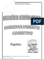 INTELIGÊNCIA SENSÓRIO-MOTOR (3)
