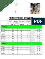 FONDERIE_VINCENT_-_Caractéristiques_mécaniques_des_fontes_GJS_et_GJL.pdf