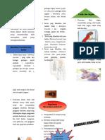 Leaflet Intoksikasi