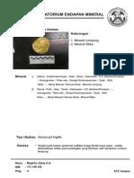 Deskripsi Filik & Advanced Argillic