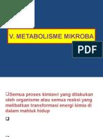 Bab v. Metabolisme