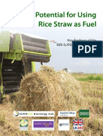 Final Executive Summary - Rice Straw Project