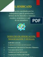 EL+SINDICATO[1][1]