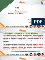 2 Ecosistemas Frágiles Ver Gore San Martin