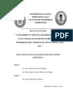 Proyecto de Investigacion Cq-muñoz y Arellano