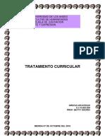 TRATAMIENTO CURRICULAR.pdf