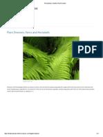 Pteridophyta _ Tentative Plant Scientist