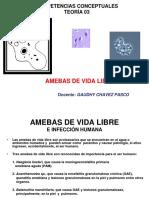 Amebas de Vida Lib (1)