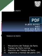 trabajodeparto2012