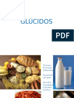 Bio2 006 GLÚCIDOS