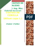 Introduccion Cultivo de Cebolla