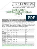 South Florida Vegetable Pest and Disease Hotline for October 10, 2016