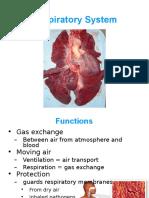 6 Respiratory