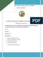 127274014 Plan de Produccion de Pollos de Engorde Para Parvadas de 1500 Pollos de Engorde de La Linea Cobb 500 Docx