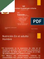 Nutricion en Adulto Hombre