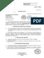 Formato Dictamen Pericial MP Guatemala