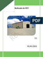 rmx_plan_negocios_molienda_extracto2012.pdf