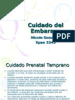 Cuidado Del Embarazo- Nicole G.