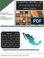Superficie cultivada y valor  de la producción de los  cultivos básicos en México