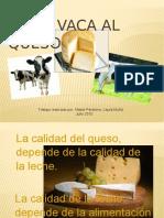 vaca-ptt-100718005854-phpapp02