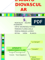 Aparato Cardiovascular Diapos