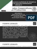 Sociedades Cooperativas de Producción Expo.pptx