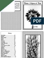 Livreto - Plantas Mágicas do Piauí - Rafael Nolêto.pdf