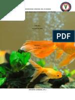 Informe acuacultura