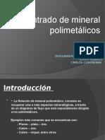 Presentación1 polimetalico